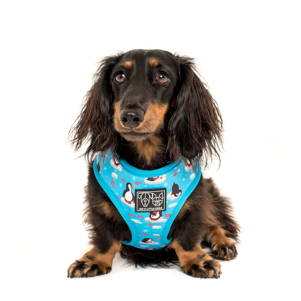 Reversible Dog Harness for Big and Small Dogs Everyday I'm Waddlin' Penguins and Snowflakes