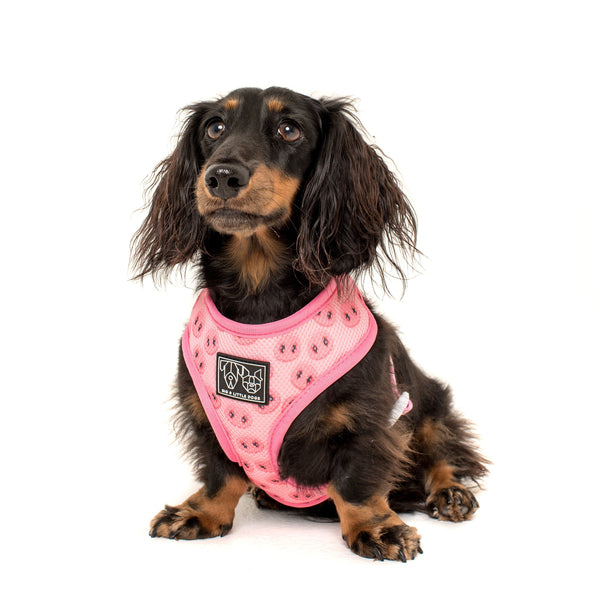 Reversible Dog Harness for Big and Small Dogs Gettin' Piggy With It Pigs and Pig Snouts