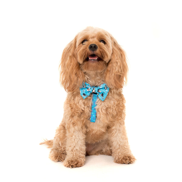 Dog Strap Harness with Bow Tie for Big and Small Dogs Every Day I'm Waddlin' Penguins