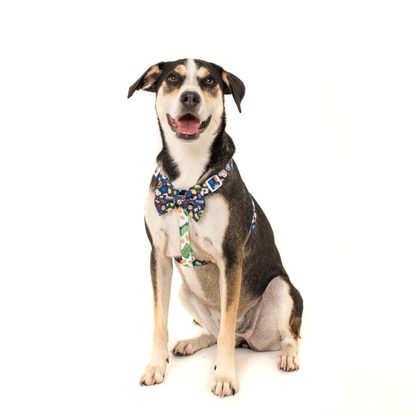 Dog Strap Harness with Bow Tie for Big and Small Dogs High Roller Las Vegas