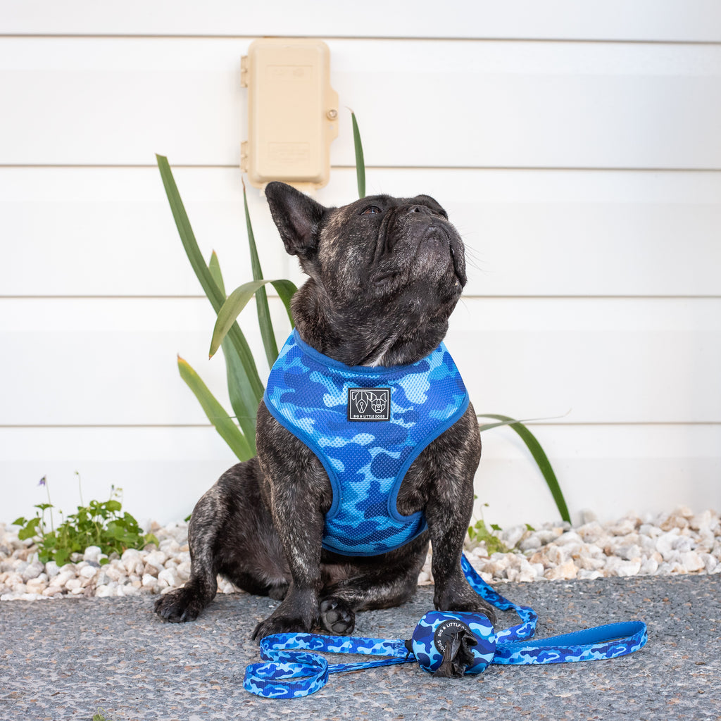 DOG POOP BAG HOLDER: Blue Camo NEW!