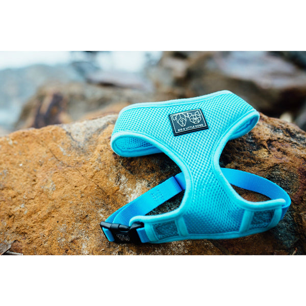 Everyday Mesh Dog Harness Blue