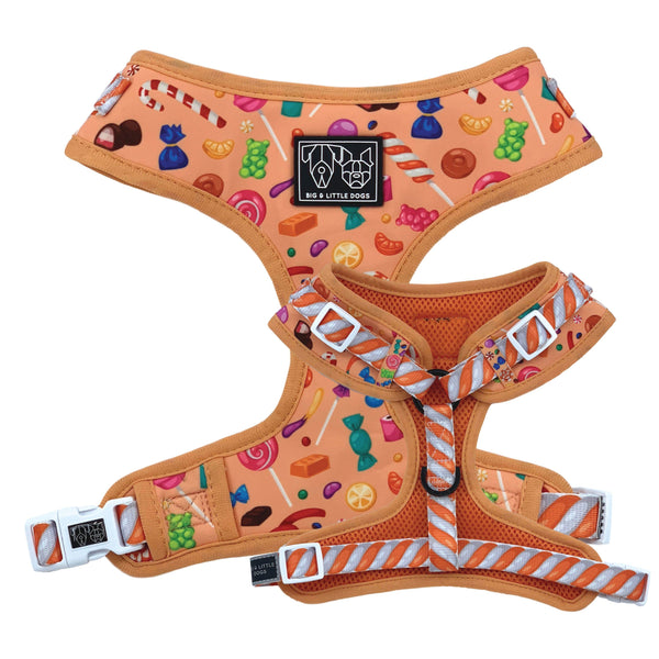 Candy Shop Adjustable Dog Harness