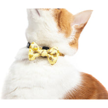 CAT COLLAR & BOW TIE: Bee-Hiving