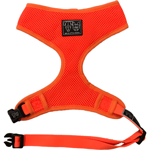 The Classic Dog Harness Orange