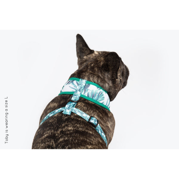 Classic Dog Mesh Harness Palms for Dayze