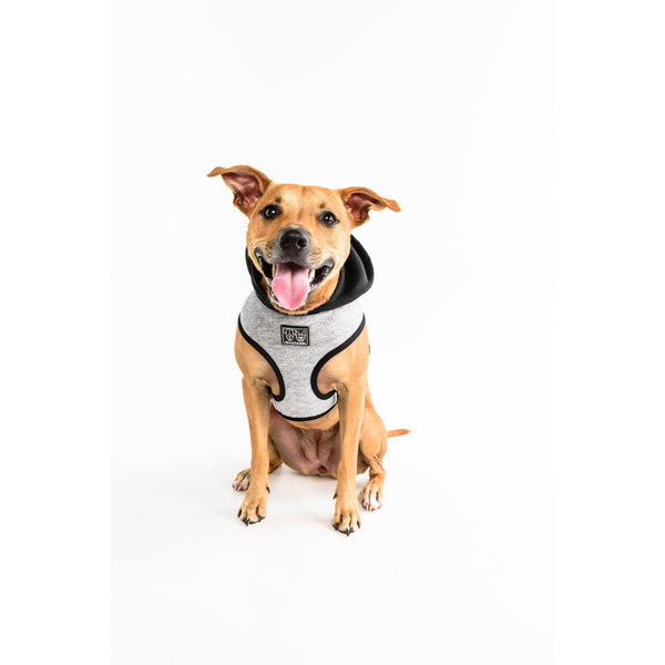 Hoody Dog Harness Classic Grey with Hood