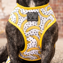 THE CLASSIC PRINT HARNESS: Going Bananas {FINAL SALE}