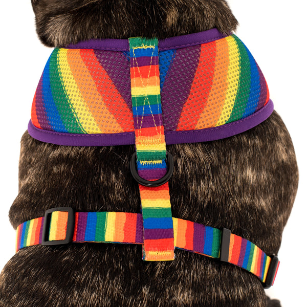 Classic Double Mesh Dog Harness Rainbow Pride
