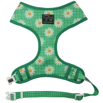 Classic Mesh Dog Harness Fresh as a Daisy