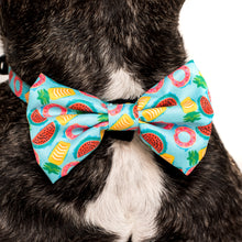 DOG COLLAR & BOW TIE: A Splashing Good Time {FINAL SALE}