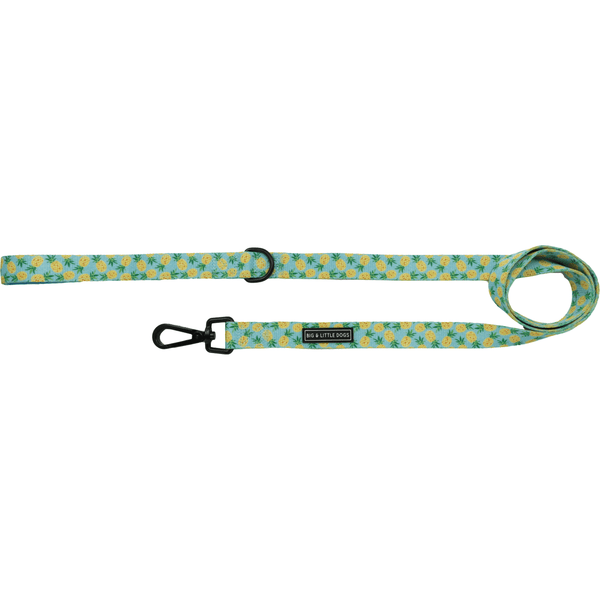 Comfort Dog Leash Pineapples
