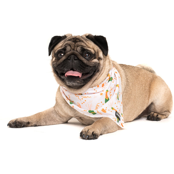 Dog Cooling Neckerchief Bandana Poppin' Bottles Champagne Celebrate New Years Eve
