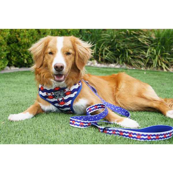 Crabby Nautical Reversible Dog Harness and Leash