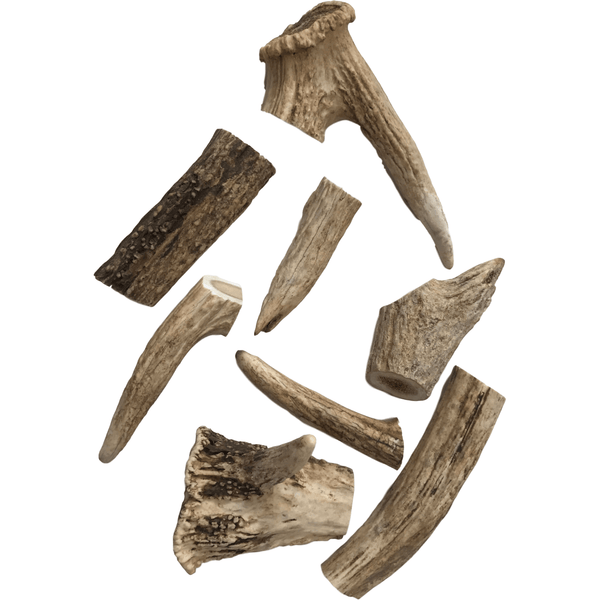 Deer Antlers Dog Treats Various Sizes