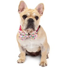 Dog Collar and Bow Tie Born to be a Unicorn Pink Flowers