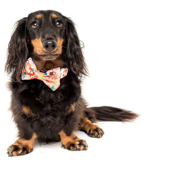 Candy Shop Comfort Dog Collar with Detachable Bow Tie