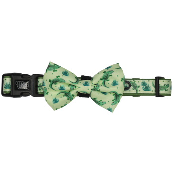DOG COLLAR & BOW TIE: Crikey Croc (NEW!)
