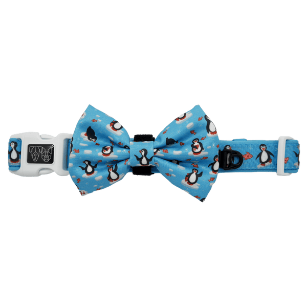 Dog Collar and Bowtie for Big and Small Dogs Every Day I'm Waddlin' Penguins