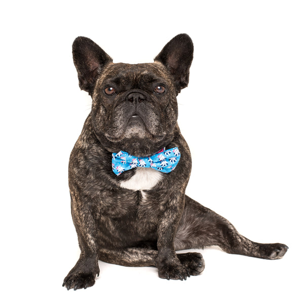 Dog Collar and Bow Tie Feeling Nauti Hippos Nautical