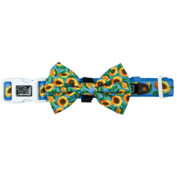 Dog Collar and Bow Hello Sunshine Blue Sunflowers