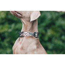 Dog Collar and Bow Tie Luxurious Leopard
