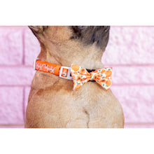 Dog Collar and Bow Tie Just Peachy Peaches