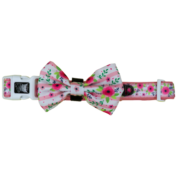 Dog Collar and Bow Tie with Neoprene Lining Pretty as can Bee Floral