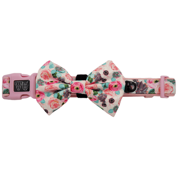 Comfort Dog Collar and Bow Tie I'm A Succa For You Succulents and Flowers