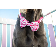 Dog Comfort Collar and Bow Tie Tie Dye Pink