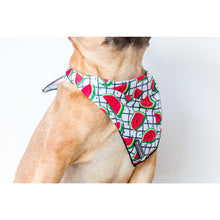 Dog Cooling Bandana A Slice of Summer Watermelons