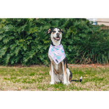 Cooling Dog Bandana Pastel Dreams