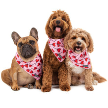 Dog Cooling Bandana Sucker For Love Valentines Day