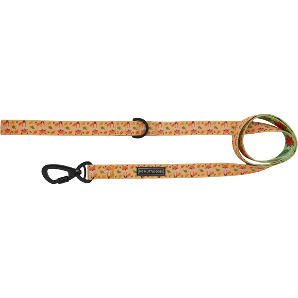 Comfort Dog Leash Feeling Foxy Foxes and Autumn Fall Leaves