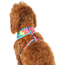 Reversible Dog Harness Up Up and Away Hot Air Balloons Rainbows