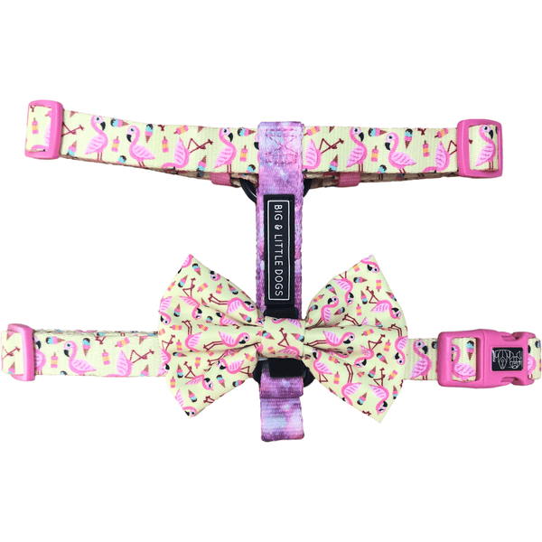 Dog Strap Harness for Big and Small Dogs Flamingo Ice Creams Galaxy Stars