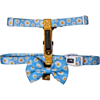 DOG STRAP HARNESS: Lazy Daisy (NEW!)