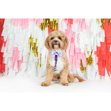 Dog Strap Harness Tie Dye For