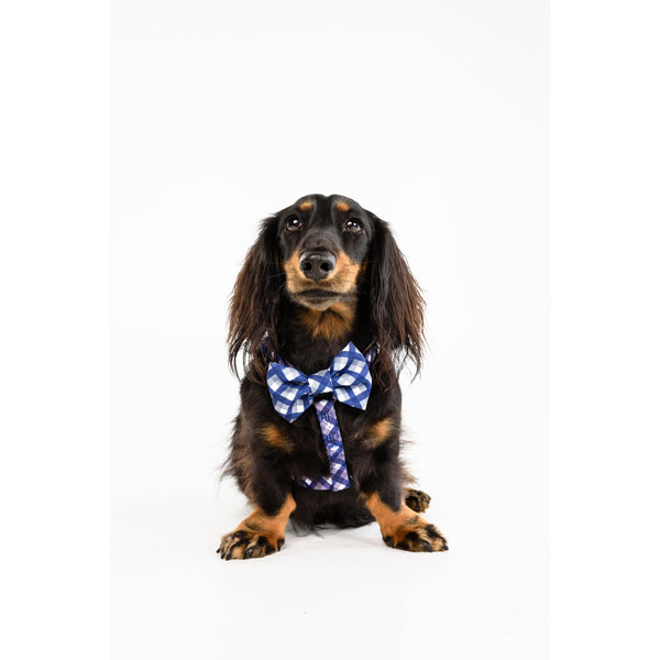 Dog Strap Harness with Bow Tie for Big and Small Dogs Grandpa Plaid Checks