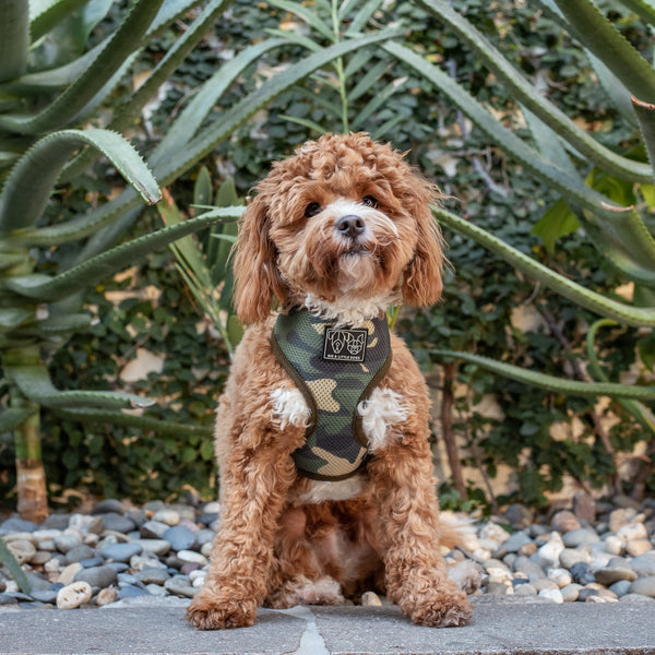 Classic Dog Mesh Harness Green Camo
