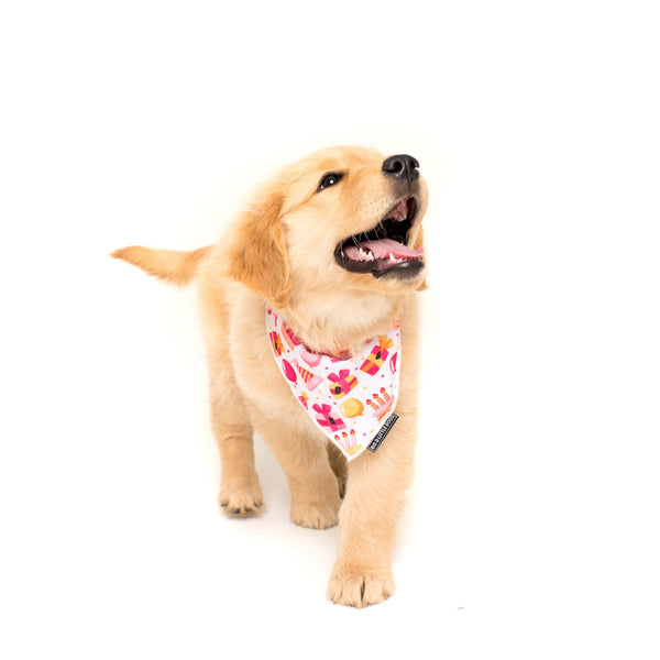 Girl Bark Day Birthday Dog Cooling Bandana Neckerchief