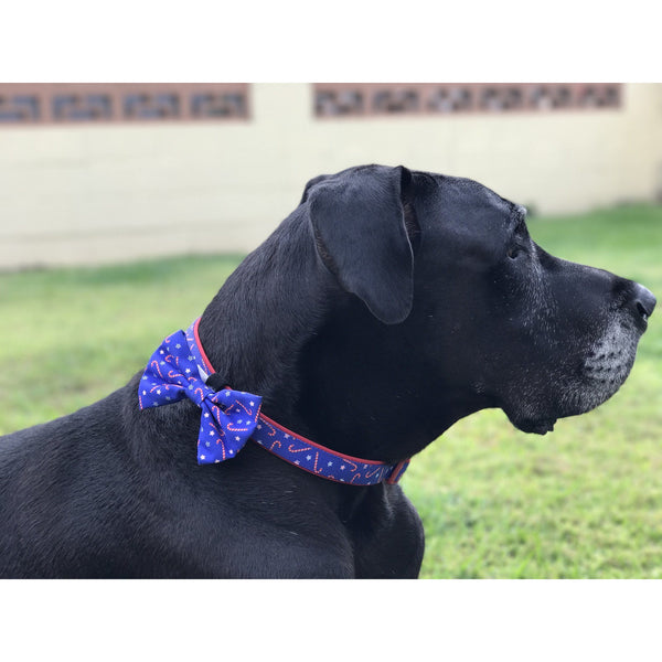 Christmas Package Candy Cane Collar and Bowtie