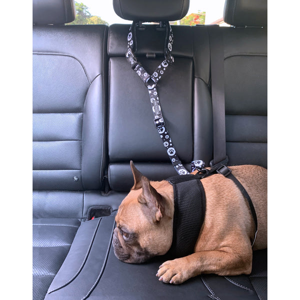PREMIUM DOG CAR HEADREST RESTRAINT: All Paws (NEW!)