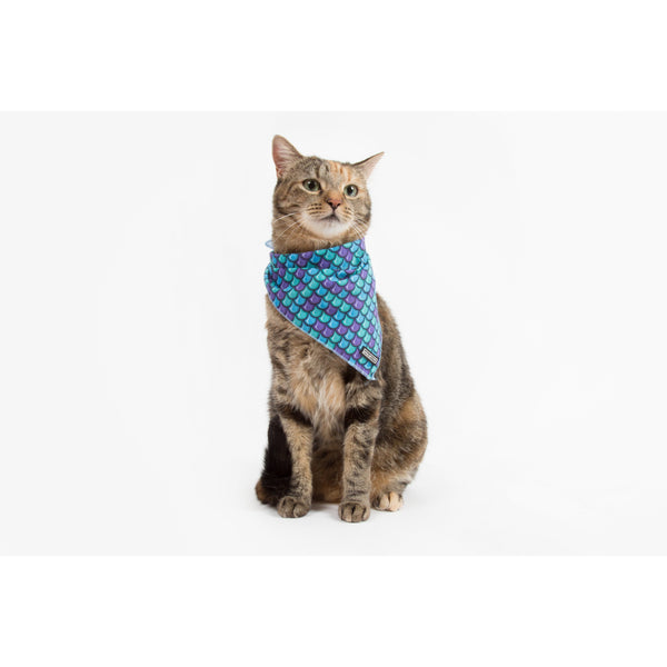 Little Kitty Co. Cooling Bandana Scaled Back