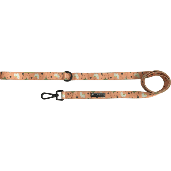 Dog Leash for Big and Small Dogs MexiCali Mexican Llamas