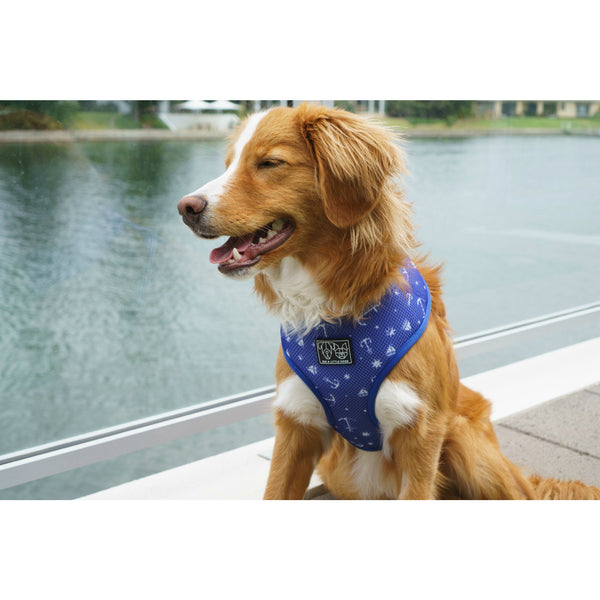 Nautical Reversible Dog Harness and Leash