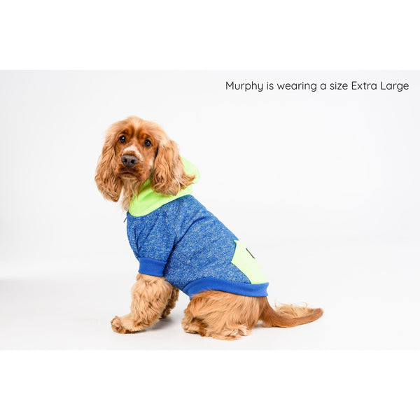 Dog Hoody Jumper for Big and Little Dogs Neon Blue and Neon Lime