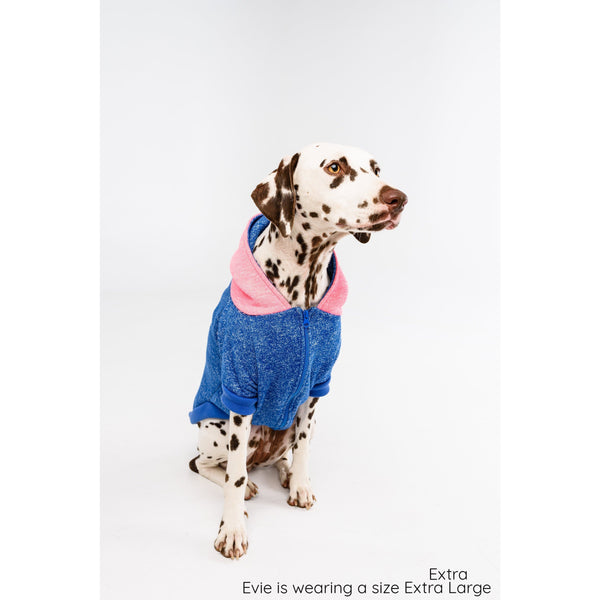Dog Hoody Jumper for Big and Little Dogs Neon Blue and Neon Pink