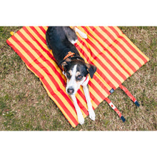 ON-THE-GO PET MAT: Harry Pupper