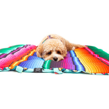 On The Go Pet Mat Mexican Cactus Sombrero Mexican Sarape Blanket